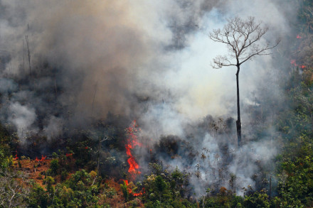 TOPSHOT - Aerial picture showing a fire raging in the Amazon rainforest about 65 km from Porto Velho, in the state of Rondonia, in northern Brazil, on August 23, 2019. - Bolsonaro said Friday he is considering deploying the army to help combat fires raging in the Amazon rainforest, after news about the fires have sparked protests around the world. The latest official figures show 76,720 forest fires were recorded in Brazil so far this year -- the highest number for any year since 2013. More than half are in the Amazon. (Photo by Carl DE SOUZA / AFP)        (Photo credit should read CARL DE SOUZA/AFP/Getty Images)